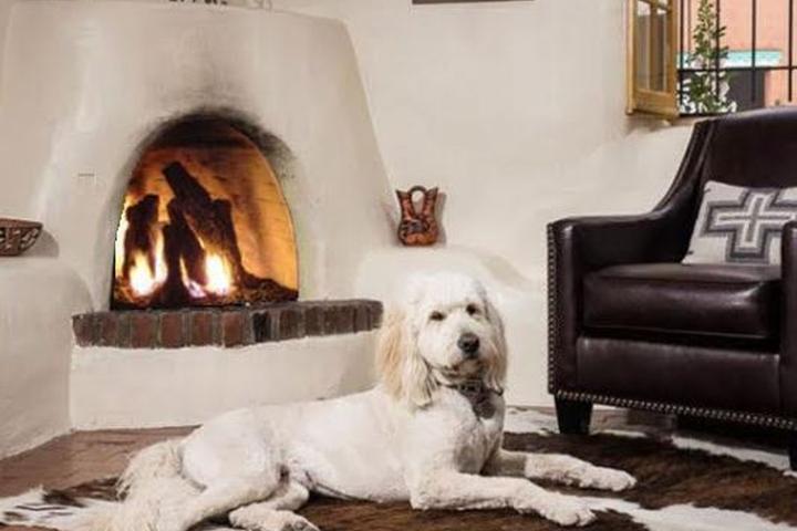 Top Pet Friendly Vacation Rentals Worldwide - Bring Fido