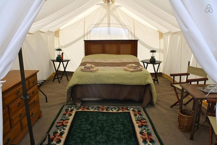 Pet Friendly West Yellowstone Airbnb Rentals