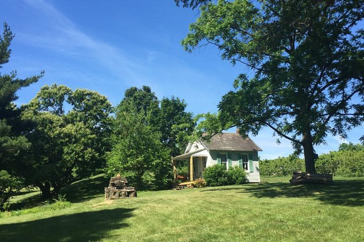 Pet Friendly Green Lane Airbnb Rentals