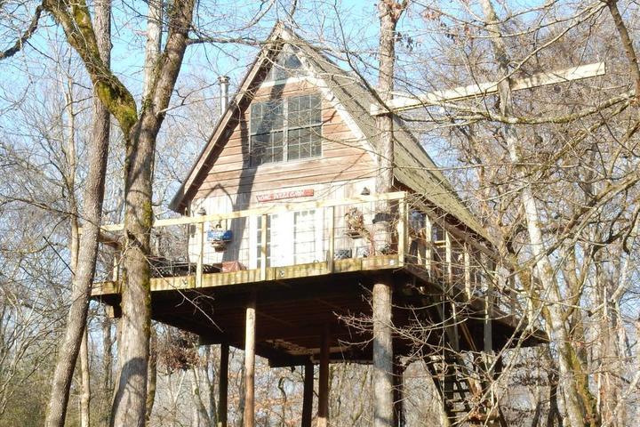 Pet Friendly Waterloo Airbnb Rentals