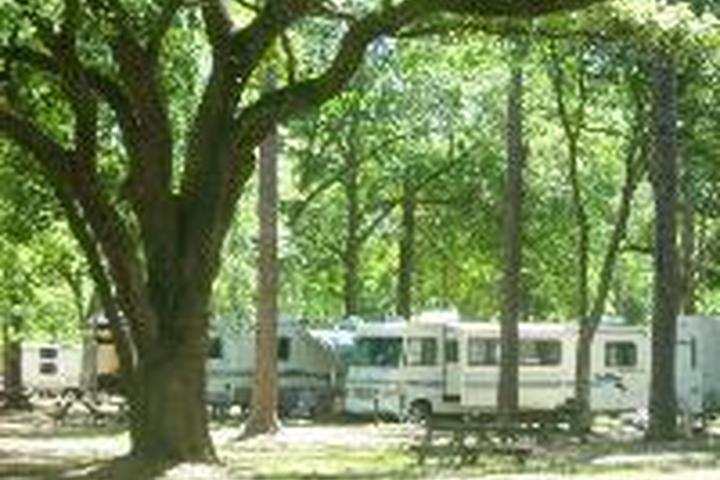 Pet Friendly Land-O-Pines Family Campground Inc