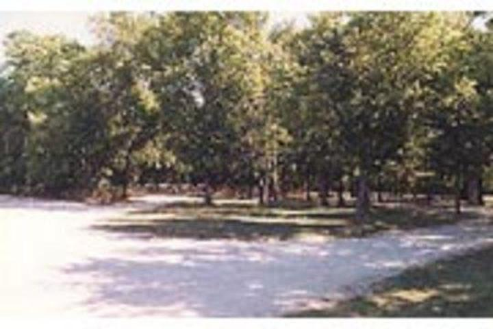 Pet Friendly Bloomington West Campground