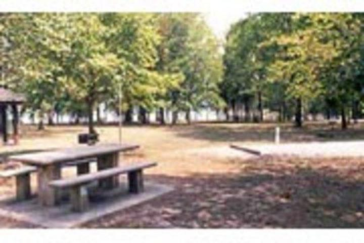 Pet Friendly Denby Point Campground