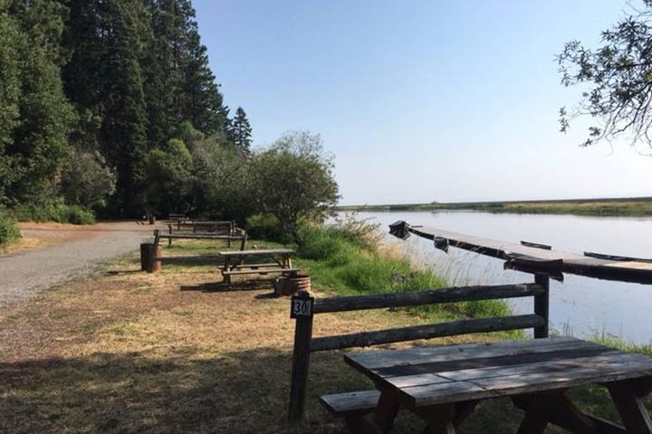 Pet Friendly Rocky Point Airbnb Rentals