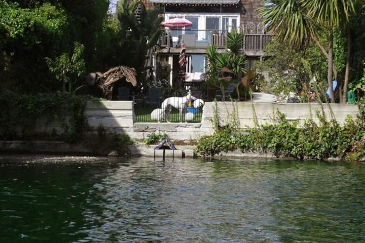 Pet Friendly Alameda Airbnb Rentals