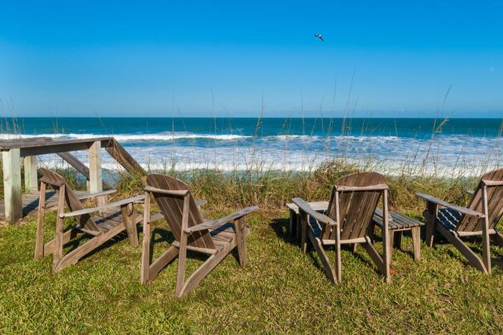 Pet Friendly Paradise Found Florida