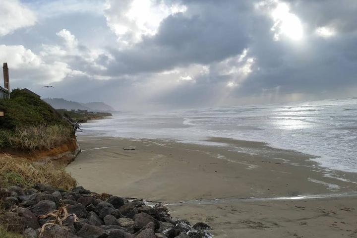 Pet Friendly Tillicum Beach Airbnb Rentals