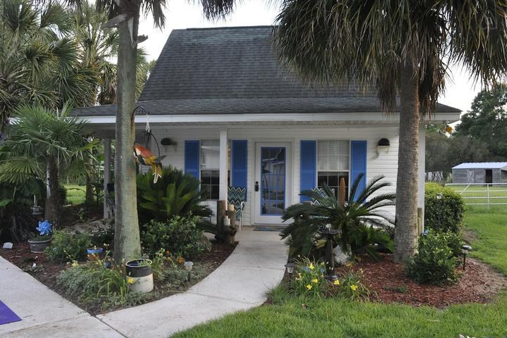 Pet Friendly Summerville Airbnb Rentals