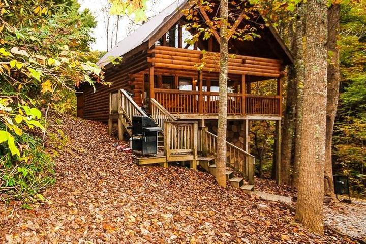 Pet Friendly Honey Bear Cabin