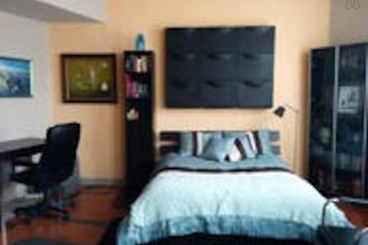 Pet Friendly Saint Paul Airbnb Rentals