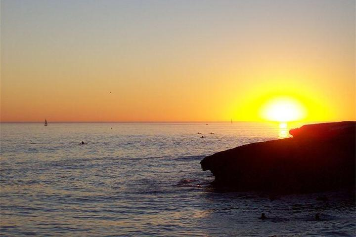 Pet Friendly Beach RV Park Santa Cruz