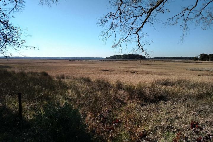 Pet Friendly Marshfront Campsite near Wildlife Refuge