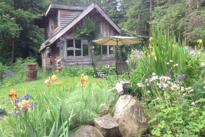 Pet Friendly Hornby Island Airbnb Rentals