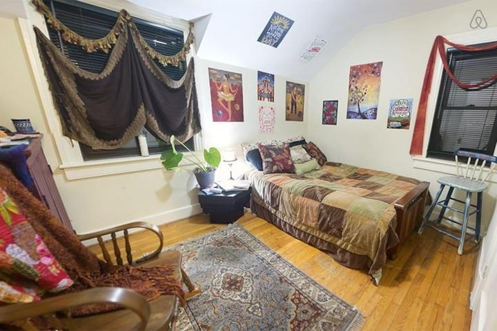 Pet Friendly Petersburg Airbnb Rentals