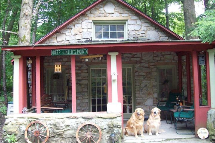 Pet Friendly Latrobe Airbnb Rentals