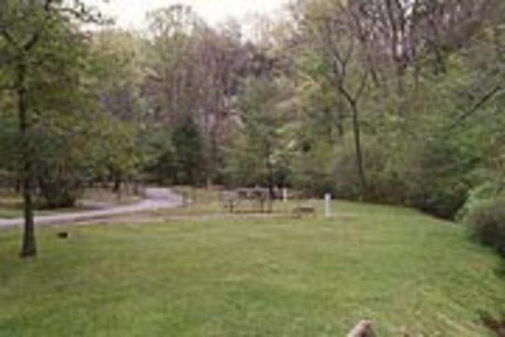 Pet Friendly Salthouse Branch Campground