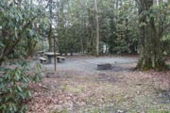 Pet Friendly Linville Falls Blue Ridge Pkwy Campground