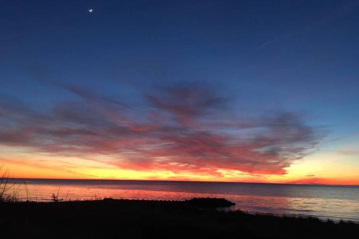Pet Friendly North Cape May Airbnb Rentals