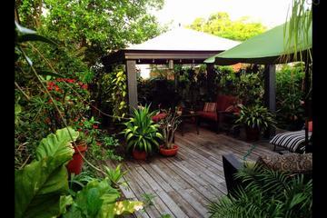 Pet Friendly Saint Petersburg Airbnb Rentals