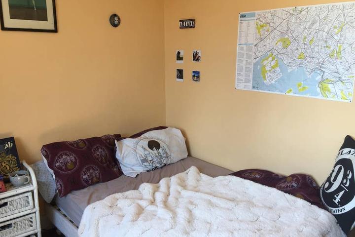 Pet Friendly Cachan Airbnb Rentals
