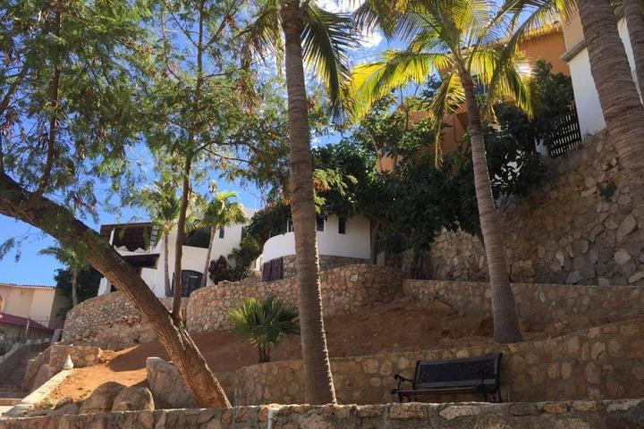 Pet Friendly Cabo San Lucas Airbnb Rentals