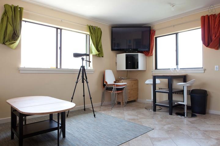 Pet Friendly Lido Beach Airbnb Rentals