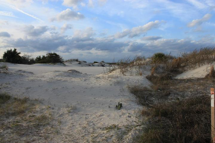 Pet Friendly Fort Clinch State Park Campground