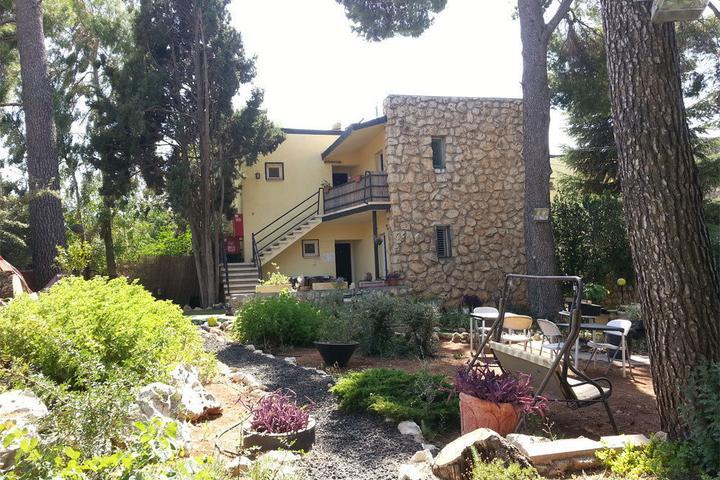 Pet Friendly The Safed Inn