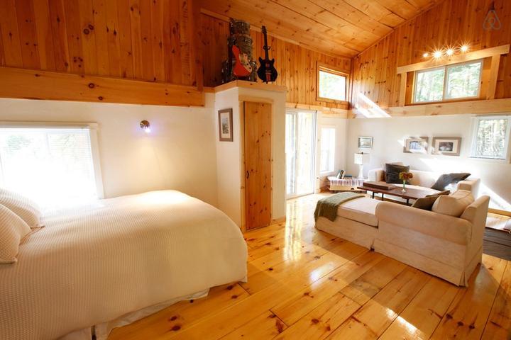 Pet Friendly King Airbnb Rentals