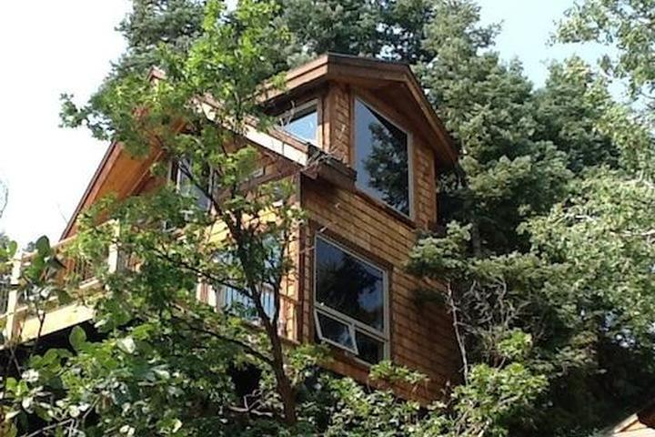 Pet Friendly Millcreek Airbnb Rentals