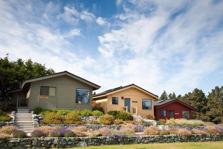 Pet Friendly Cottages at Little River Cove