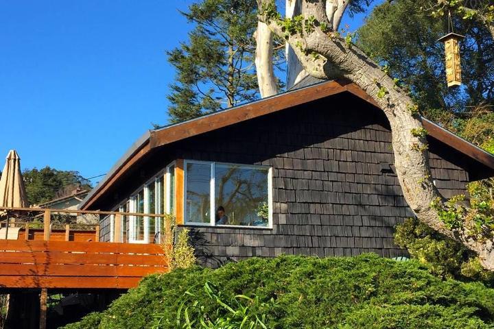 Pet Friendly El Cerrito Airbnb Rentals