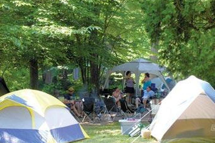 Pet Friendly Northland Outfitters Camping Resort