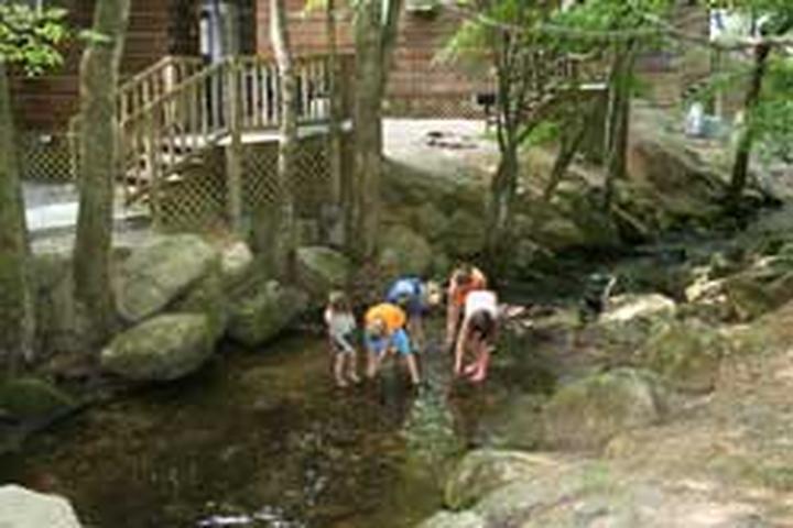 Pet Friendly Adventure Bound Camping Resorts