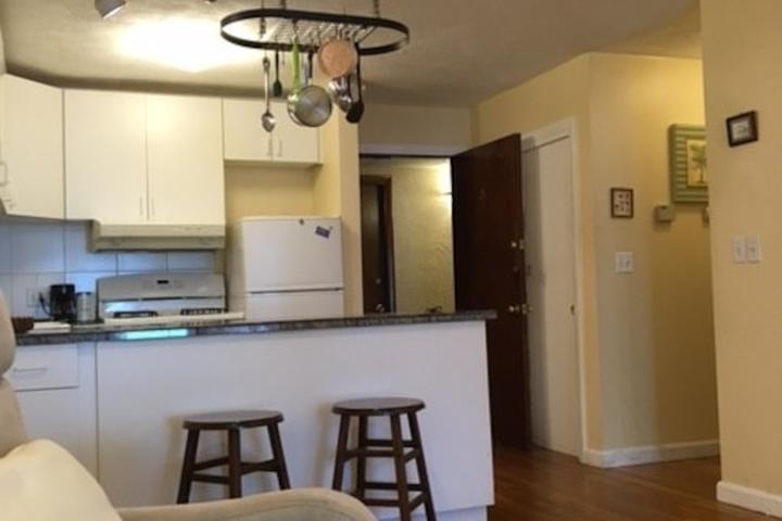 Pet Friendly Melrose Airbnb Rentals