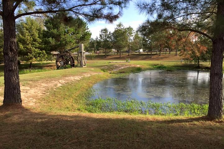 Pet Friendly Clearwater RV Park &Campground