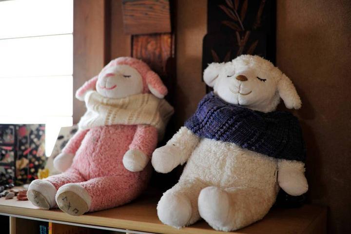 Pet Friendly Kokubunji Airbnb Rentals