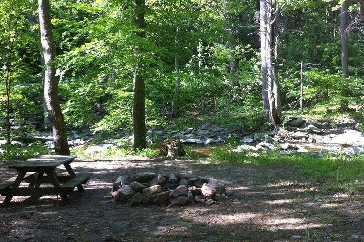 Pet Friendly Crow's Nest Campground