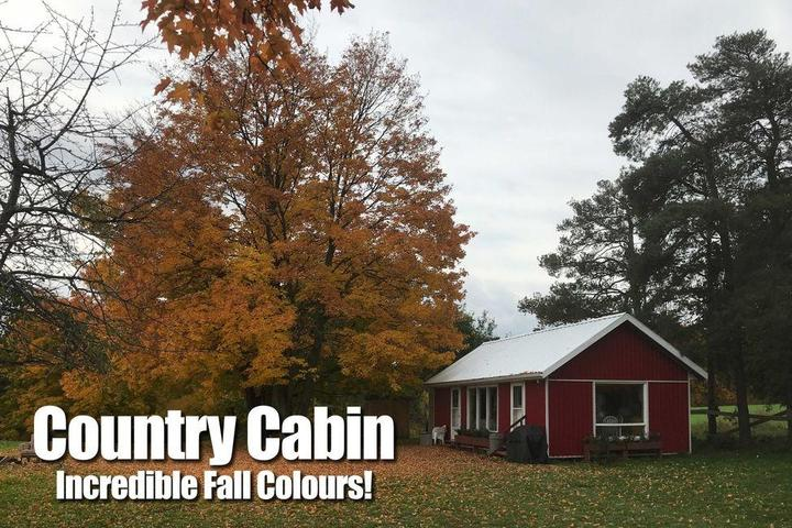 Pet Friendly Schomberg Cabin with Internet