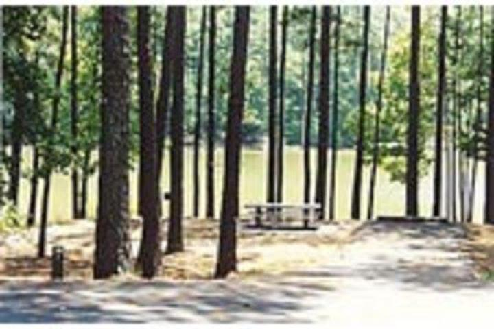 Pet Friendly Payne Campground-Allatoona Lake Campground