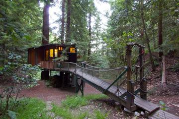 Pet Friendly Redwood Treehouse