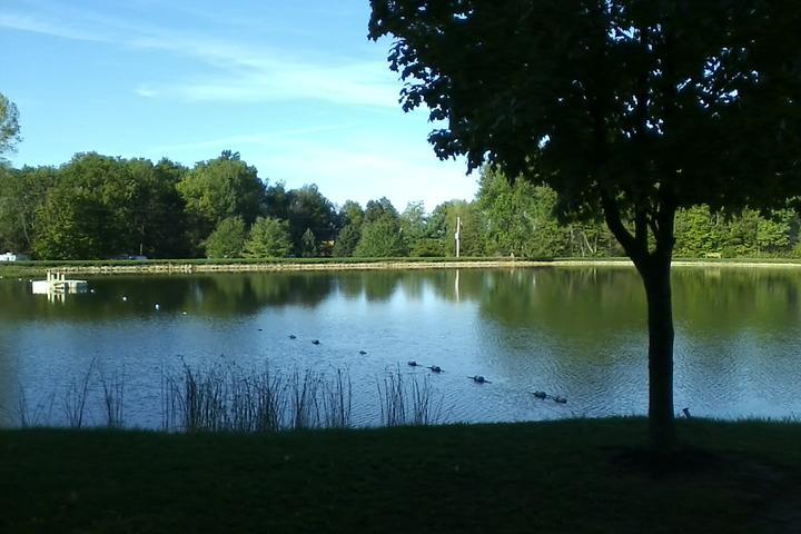 Pet Friendly Auburn Lake Park