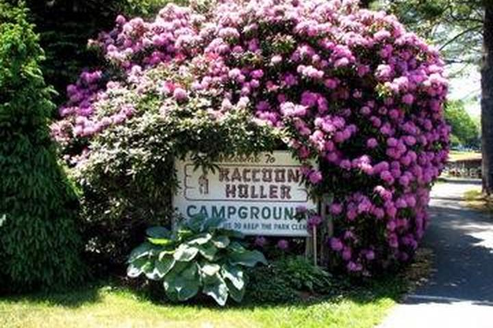 Pet Friendly Raccoon Holler Campground