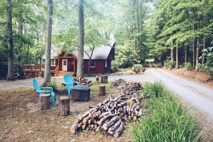 Pet Friendly Pisgah Forest Airbnb Rentals