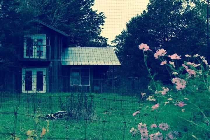 Pet Friendly Woodbury Airbnb Rentals