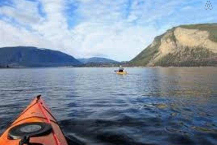 Pet Friendly Vacation Rentals In Shuswap Lake Bc Bring Fido