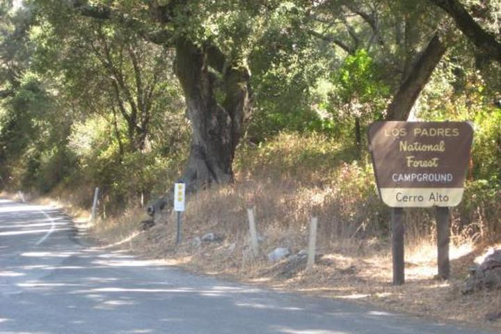 Pet Friendly Cerro Alto Camground