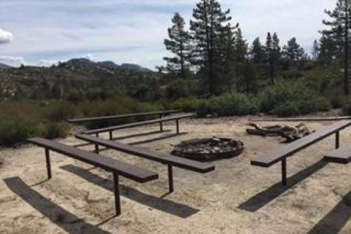 Pet Friendly Coulter Group Campground