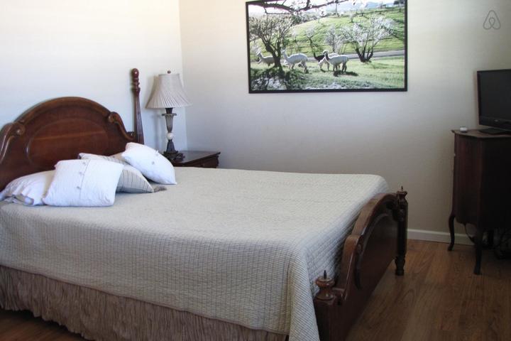 Pet Friendly Shandon Airbnb Rentals