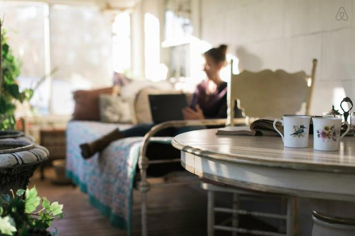 Pet Friendly Jamestown Airbnb Rentals